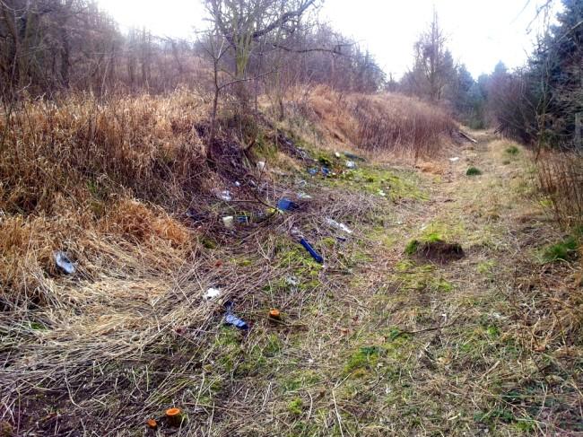 Ein natürliches Gefälle lädt dazu ein, Müll hinunter zu werfen