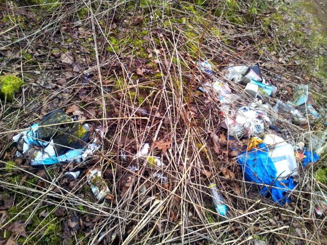 Müllbeutel zum Teil schon überwachsen