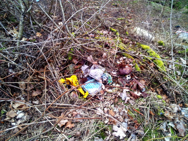 Kein Fleck ohne Müll, zum Teil 15 m weit in den Wald hereingetragen