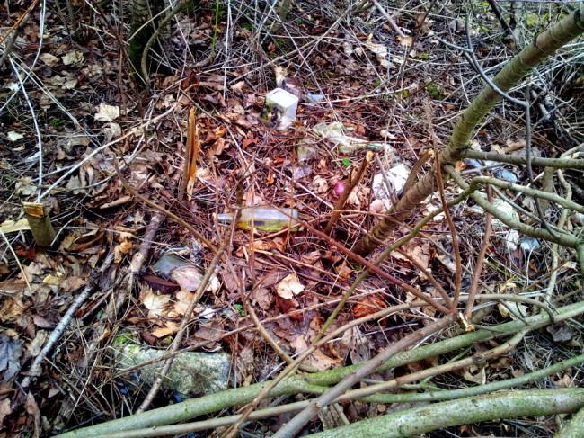 Müll schon überwuchert, bei fast jedem Schritt knackt es unter den Füßen