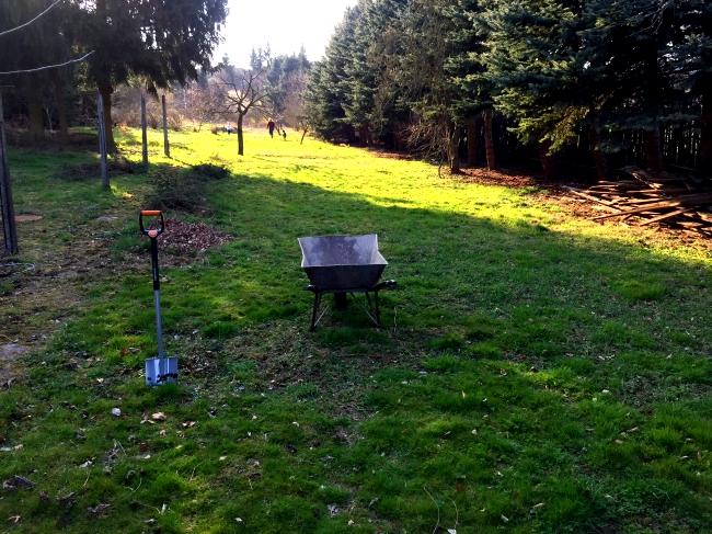 Beet anlegen - Grassoden abstechen